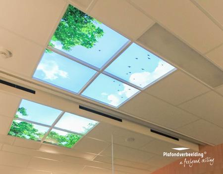 innovatieve inrichting met natuurbeleving voor plafonds en verlichting met daglicht simulatie