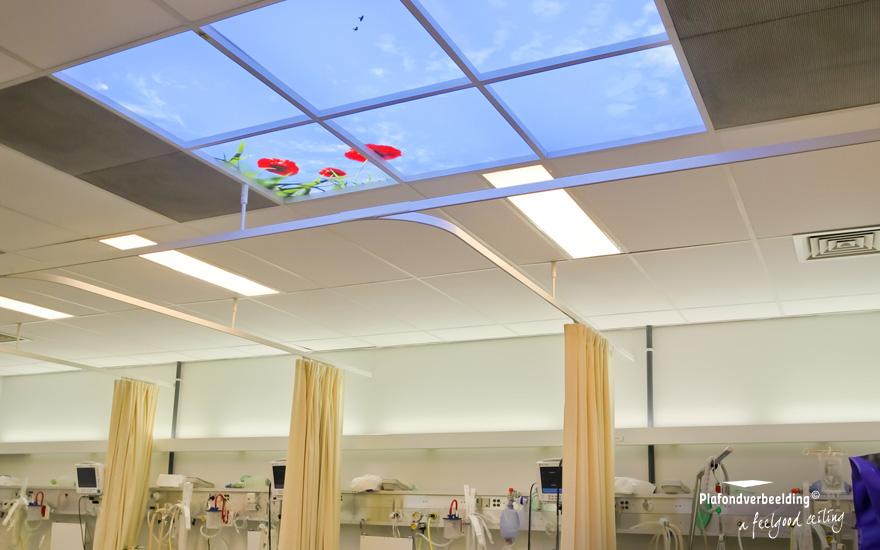 wolkenplafonds met led verlichting geluid en geur plafondverbeelding feelgood ceiling